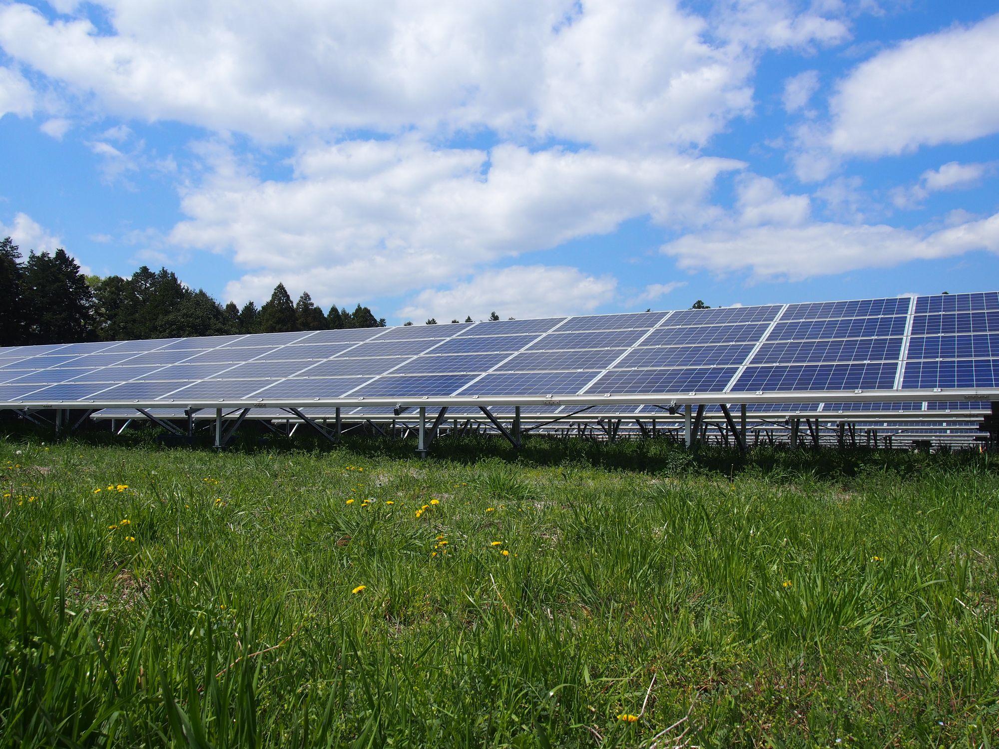 ソーラーシェアリングって何?太陽光発電投資以外でも収益を得よう